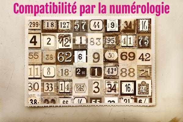Compatibilite par la numerologie